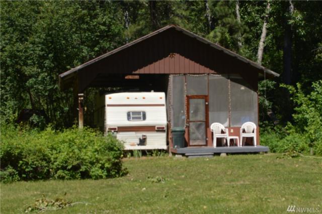 875 Twisp River Rd, Twisp, WA 98856 (#1460418) :: Homes on the Sound