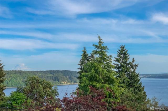 714 122nd St Ct NW, Gig Harbor, WA 98332 (#1460485) :: Real Estate Solutions Group
