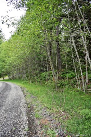 0-Lot 3 Marmot Lp, Packwood, WA 98361 (#1460540) :: Homes on the Sound