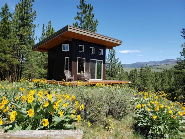 36 Appaloosa Rd, Winthrop, WA 98862 (MLS #1460560) :: Nick McLean Real Estate Group