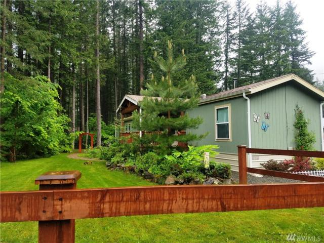 110 Sherwood Ct, Packwood, WA 98361 (#1460591) :: Costello Team
