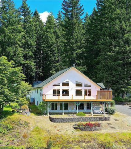 31 N Mount Seattle Place, Hoodsport, WA 98548 (#1460650) :: The Royston Team