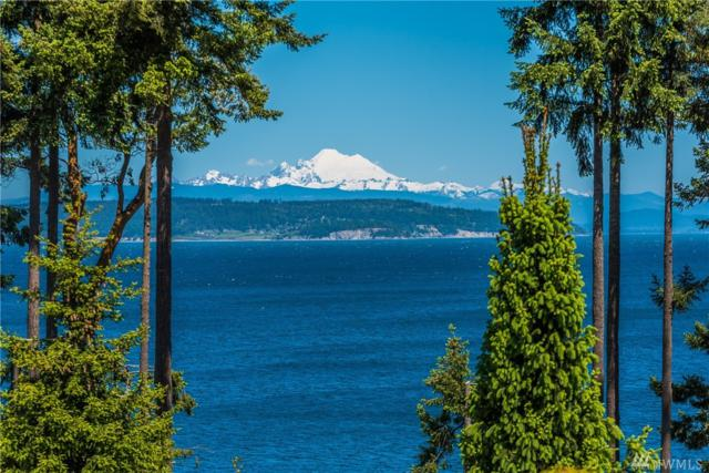 270 Kineth Point Place, Coupeville, WA 98239 (#1460861) :: Homes on the Sound