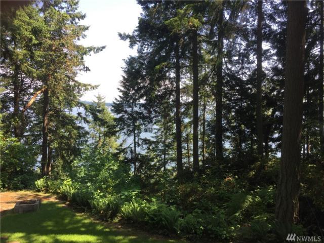 6221 150th Av Ct NW, Lakebay, WA 98351 (#1460885) :: Record Real Estate