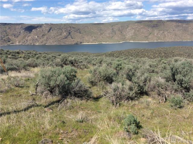 0 Spring Canyon Rd E, Grand Coulee, WA 99133 (#1460887) :: Ben Kinney Real Estate Team