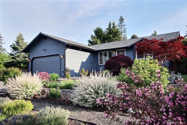 1325 234th St SW, Bothell, WA 98021 (#1460892) :: Homes on the Sound