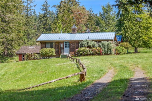 480 Wild Rose Ranch Lane, San Juan Island, WA 98250 (#1460971) :: Better Properties Lacey