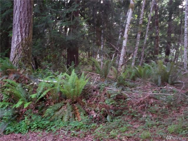 51 NE Ford Hill Rd, Tahuya, WA 98588 (#1461075) :: Better Homes and Gardens Real Estate McKenzie Group