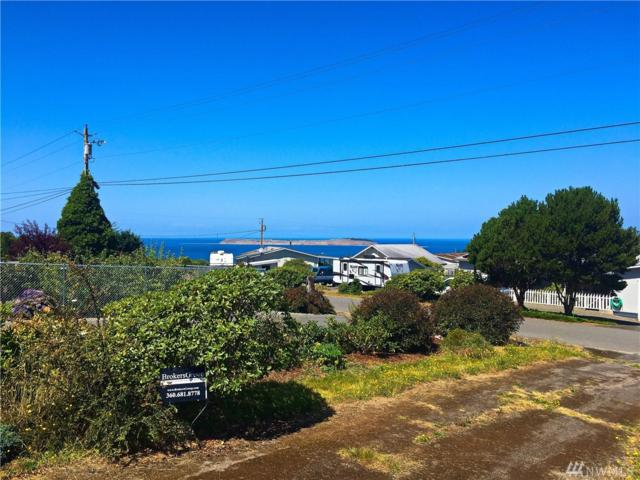 141 Ridge Dr, Port Townsend, WA 98368 (#1461485) :: Kimberly Gartland Group