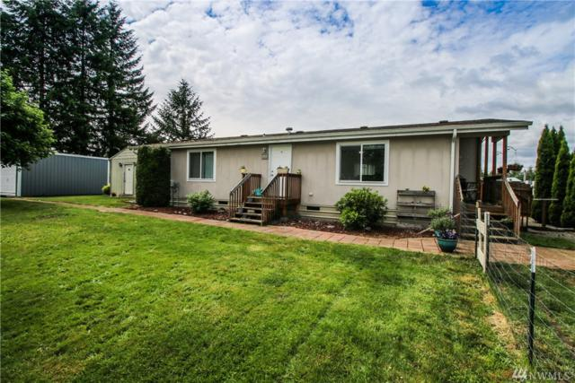 9919 180th Wy SW, Rochester, WA 98579 (#1461927) :: Kimberly Gartland Group