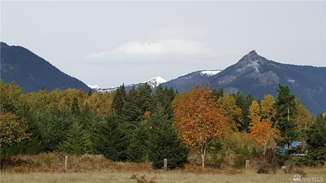 0 Us Hwy 12, Packwood, WA 98361 (#1461995) :: Homes on the Sound