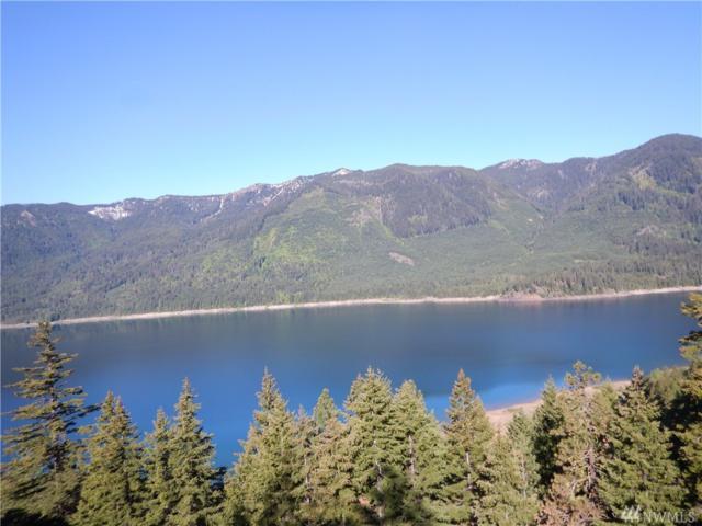0-Lot 6 Beargrass Rd, Ronald, WA 98940 (#1462516) :: Coldwell Banker Kittitas Valley Realty