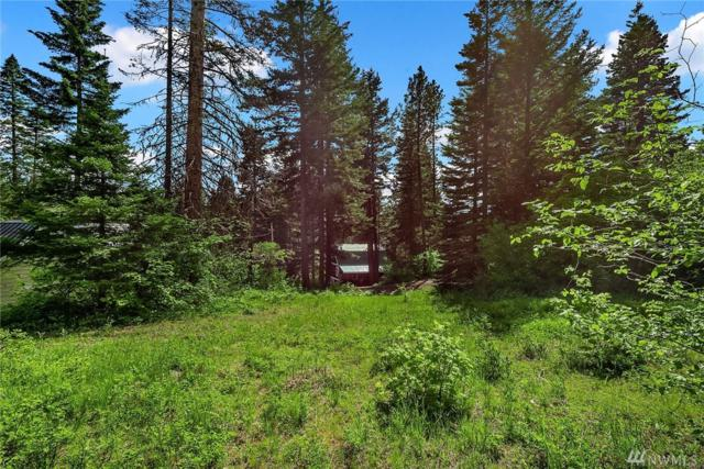 0-XX Lot 55 Eagle View Dr, Ronald, WA 98940 (#1462784) :: Coldwell Banker Kittitas Valley Realty