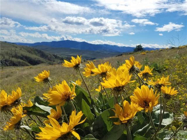 589 Indian Dan Canyon Rd, Brewster, WA 98812 (#1462801) :: Kimberly Gartland Group