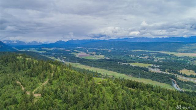 2 Upper Peoh Point Rd, Cle Elum, WA 98922 (#1462843) :: Keller Williams Realty Greater Seattle
