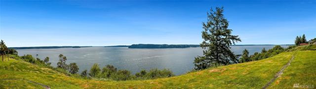1054 Paiute Trail, Fox Island, WA 98333 (#1463018) :: Record Real Estate