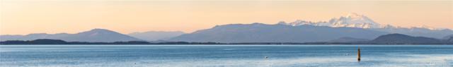 712 Maple Grove Rd, Camano Island, WA 98282 (#1463049) :: Costello Team