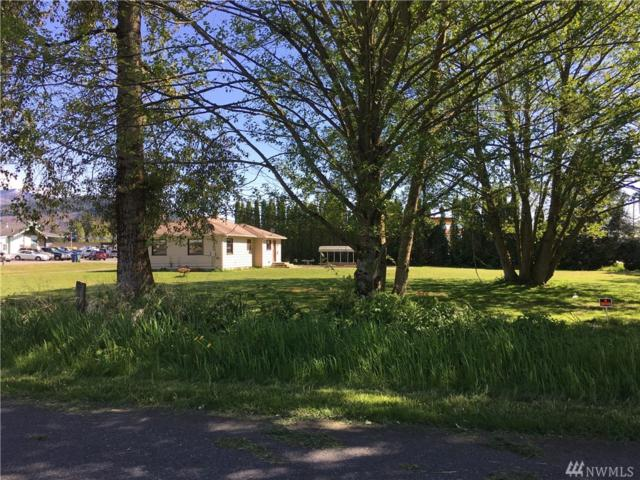820 Trail Rd, Sedro Woolley, WA 98275 (#1463068) :: Costello Team