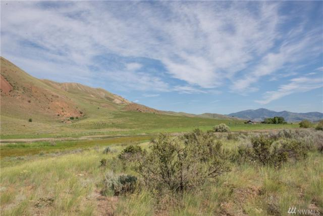 98-xx Balky Hill Rd, Twisp, WA 98856 (#1463455) :: Record Real Estate