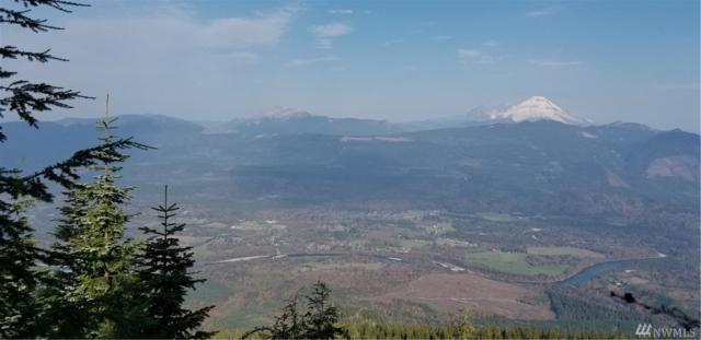 0 South Skagit Highway, Concrete, WA 98237 (#1463473) :: Homes on the Sound
