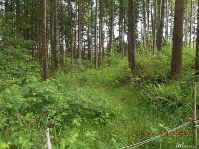 1491 State Route 122, Silver Creek, WA 98585 (#1463560) :: Costello Team