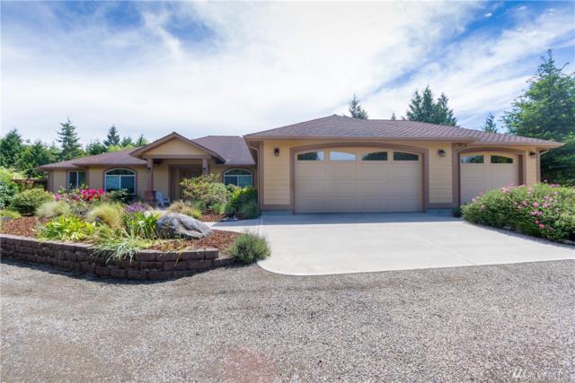 1003 Parkridge Drive, Port Townsend, WA 98368 (#1463922) :: Platinum Real Estate Partners