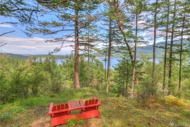 3 Village View, Orcas Island, WA 98245 (#1463954) :: Ben Kinney Real Estate Team