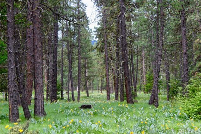 0 Lot D2 Airport Rd, Cle Elum, WA 98922 (#1463983) :: Priority One Realty Inc.