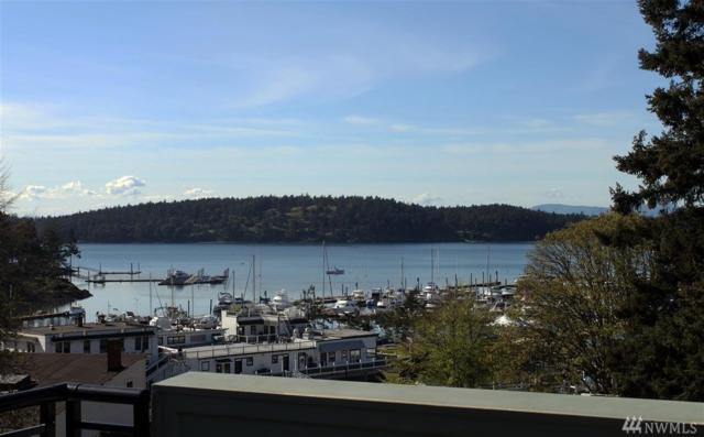 91 Captain Garthney Lane, Friday Harbor, WA 98250 (#1463990) :: Costello Team