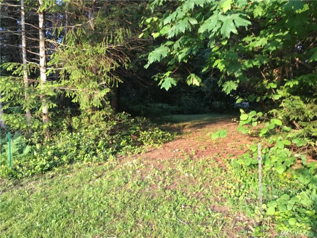 471 Wood Lane, Shelton, WA 98584 (#1464343) :: Platinum Real Estate Partners