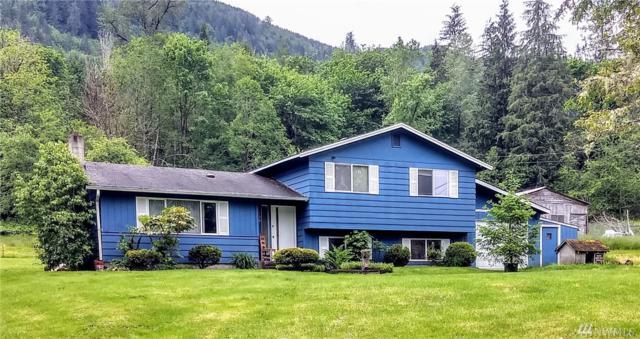 130 Dodge Rd, Morton, WA 98356 (#1464794) :: Better Properties Lacey