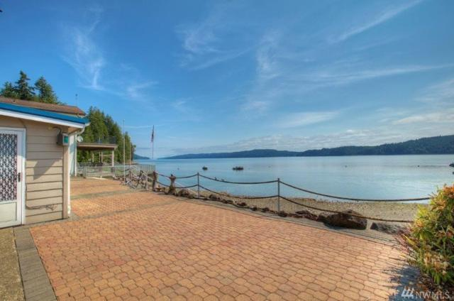 27200 N Us Highway 101, Hoodsport, WA 98548 (#1464879) :: Mosaic Home Group
