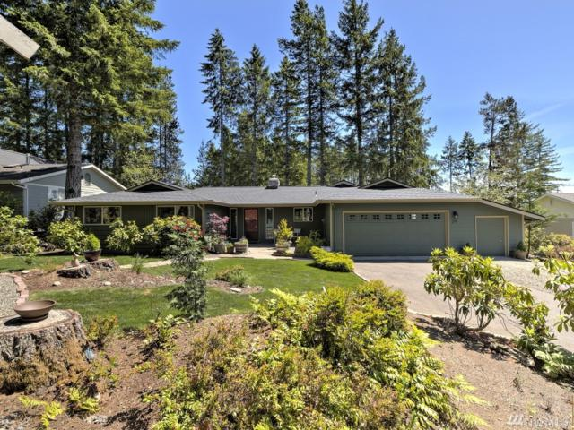 291 E Michelle Dr, Union, WA 98592 (#1465137) :: Keller Williams Realty