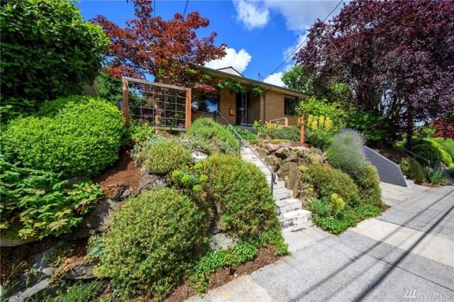 8031 20th Ave NE, Seattle, WA 98115 (#1465750) :: Record Real Estate