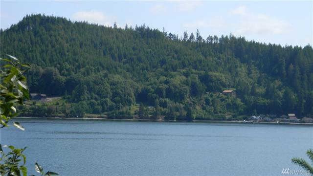 12801 NE North Shore Rd, Belfair, WA 98528 (#1465801) :: Better Properties Lacey