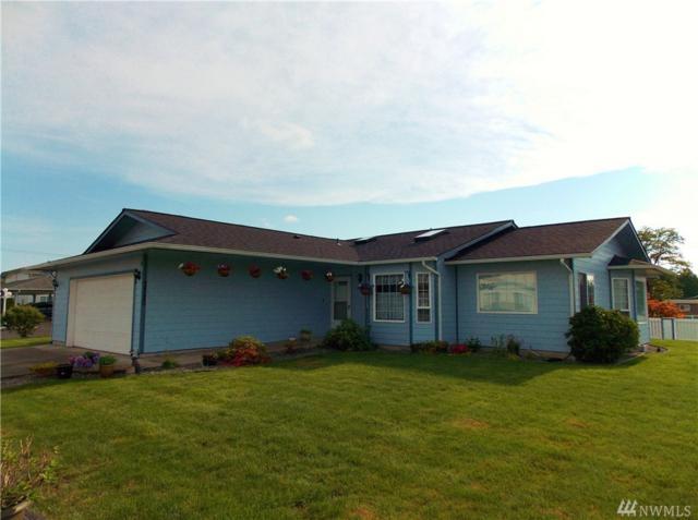 3320 Tiger Lane, Centralia, WA 98531 (#1465877) :: Record Real Estate