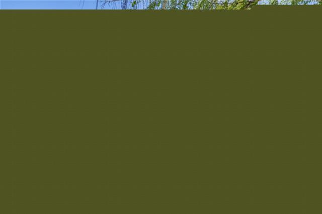 1321 N Arbor Terr, East Wenatchee, WA 98802 (#1466264) :: Ben Kinney Real Estate Team