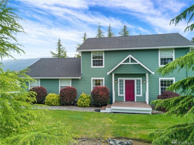 17138 Trout Dr, Mount Vernon, WA 98274 (#1466641) :: Ben Kinney Real Estate Team
