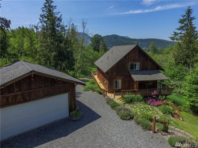 503 Mineral Hill Rd, Mineral, WA 98355 (#1466695) :: Ben Kinney Real Estate Team