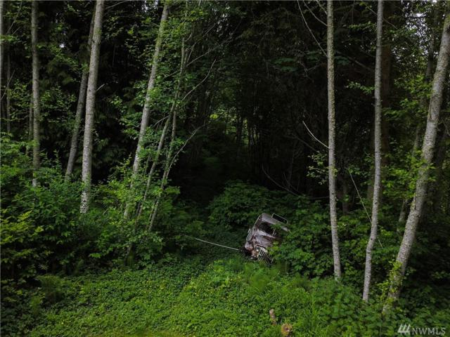 999 Olallie Trail, Joyce, WA 98363 (#1466978) :: Platinum Real Estate Partners