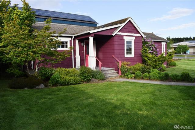 95 Weeks Rd, Lopez Island, WA 98261 (#1467259) :: Ben Kinney Real Estate Team