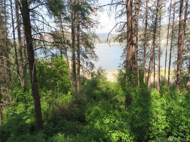 41910 Porcupine Bay Rd N, Davenport, WA 99122 (#1467517) :: Better Properties Lacey
