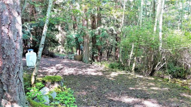 66 Lodgepole Lane, Lopez Island, WA 98261 (#1467589) :: Ben Kinney Real Estate Team