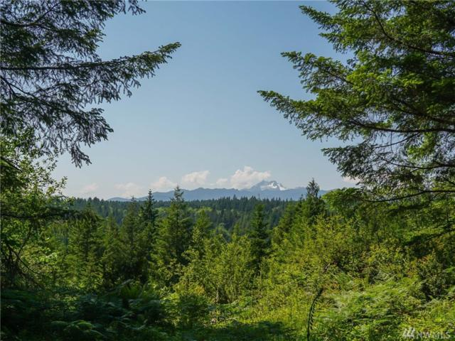 1-lot Larson Lane NW, Seabeck, WA 98380 (#1467651) :: Better Homes and Gardens Real Estate McKenzie Group