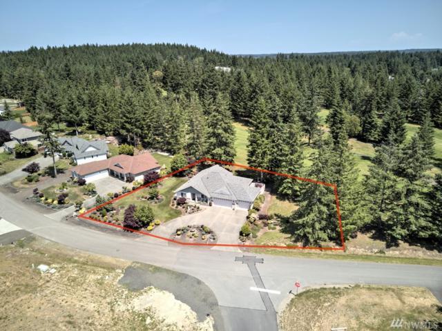 420 E Soderberg Rd, Allyn, WA 98524 (#1467730) :: Ben Kinney Real Estate Team