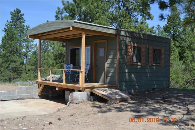 838 Havillah Rd, Tonasket, WA 98855 (#1467826) :: Ben Kinney Real Estate Team