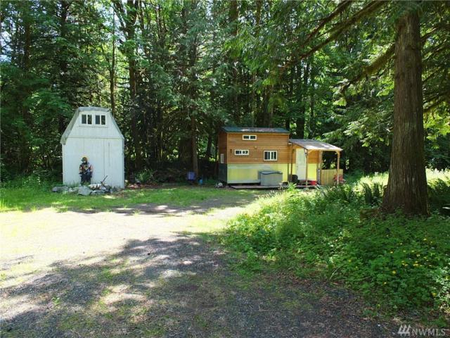 6118 Mt. Baker Hwy, Deming, WA 98244 (#1467917) :: KW North Seattle