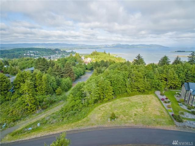 3022 Lighthouse Keepers Rd, Ilwaco, WA 98624 (#1467961) :: Crutcher Dennis - My Puget Sound Homes