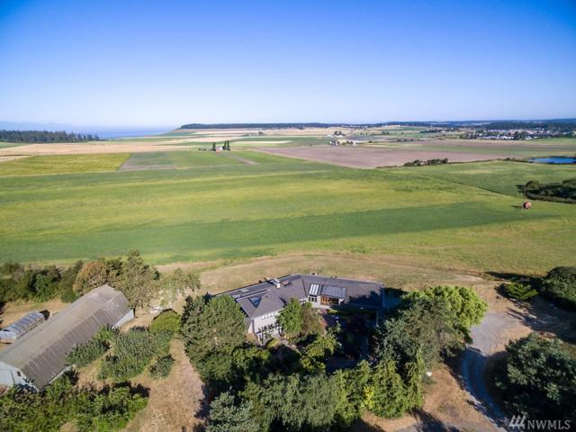 1095 Burchell Rd, Coupeville, WA 98239 (#1468022) :: Record Real Estate