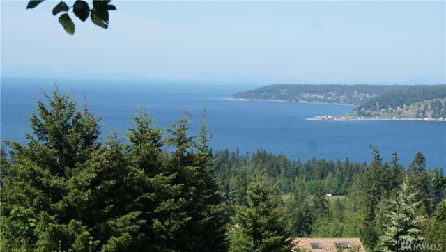 302 View Ridge Dr, Sequim, WA 98382 (#1468063) :: Alchemy Real Estate